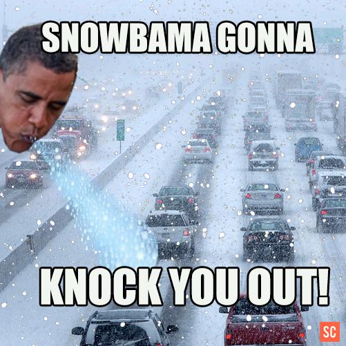 snowbamaknockout